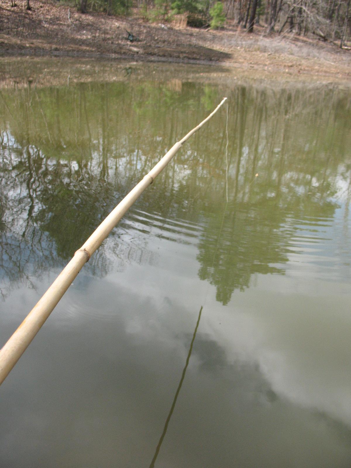 Primitive fishing catching fish sensible survival for Tiny fishing pole