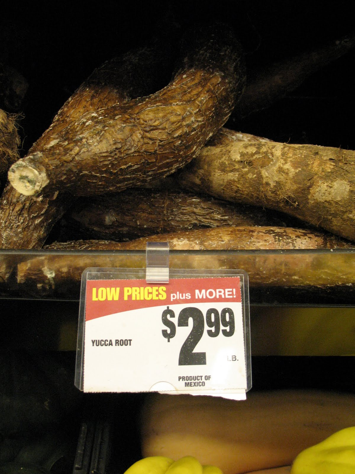 Can My Dog Eat Yucca Root