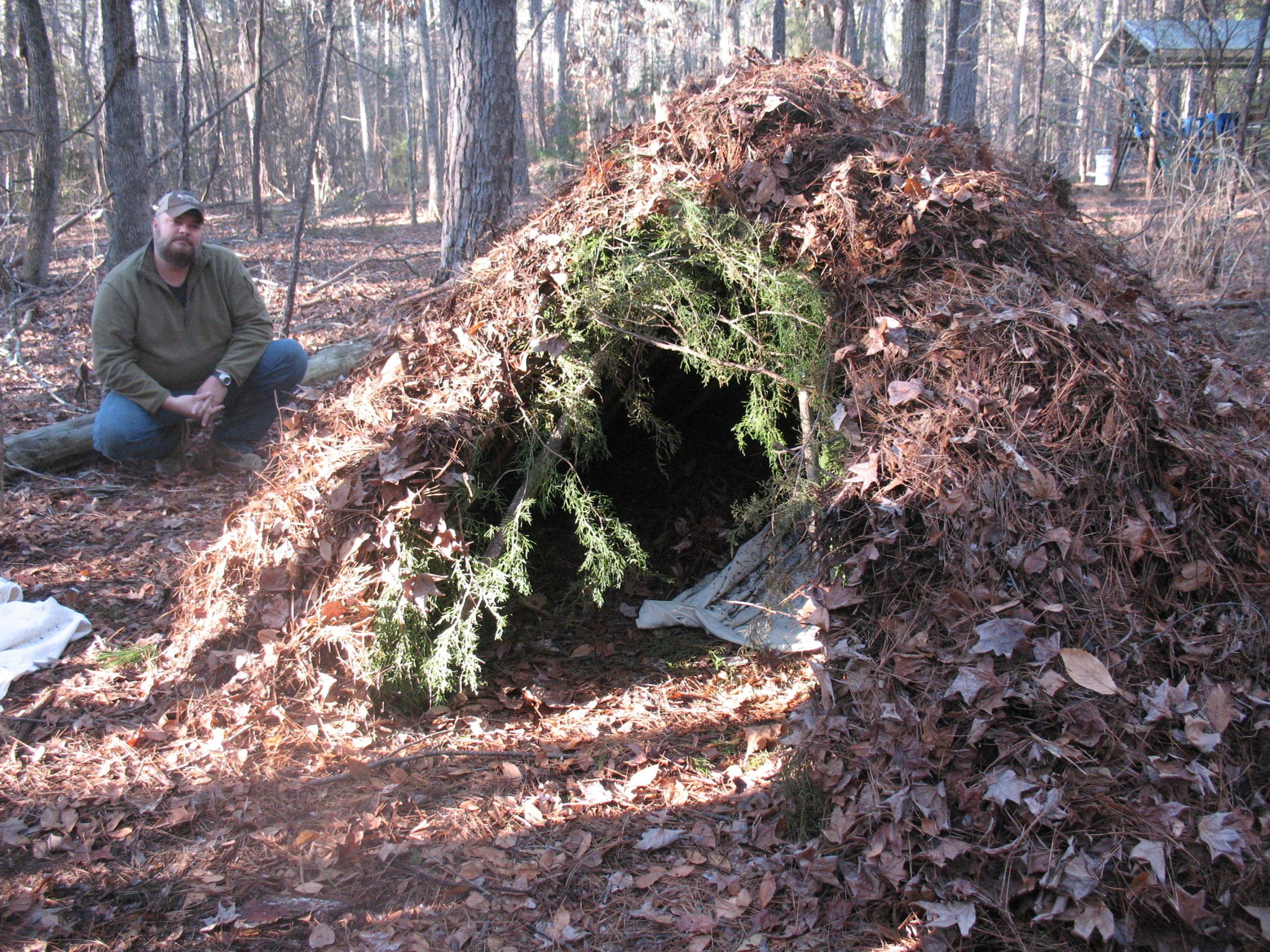 Woods survival stories xbox