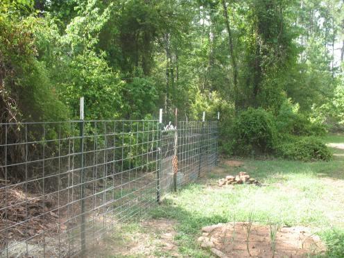 03 fence 1