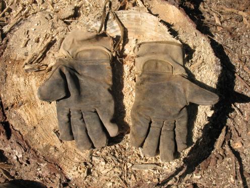 01 old work gloves